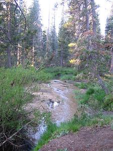 Small creek next to campsite.