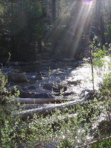 Early-morning sunbeams on Roaring River, Kings Canyon National Park.