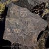 NM-PNM-PMT2019.11.12#1624.2. Petroglyph. Piedras Marcadas Trail, Petroglyph Nat.Mon., New Mexico.