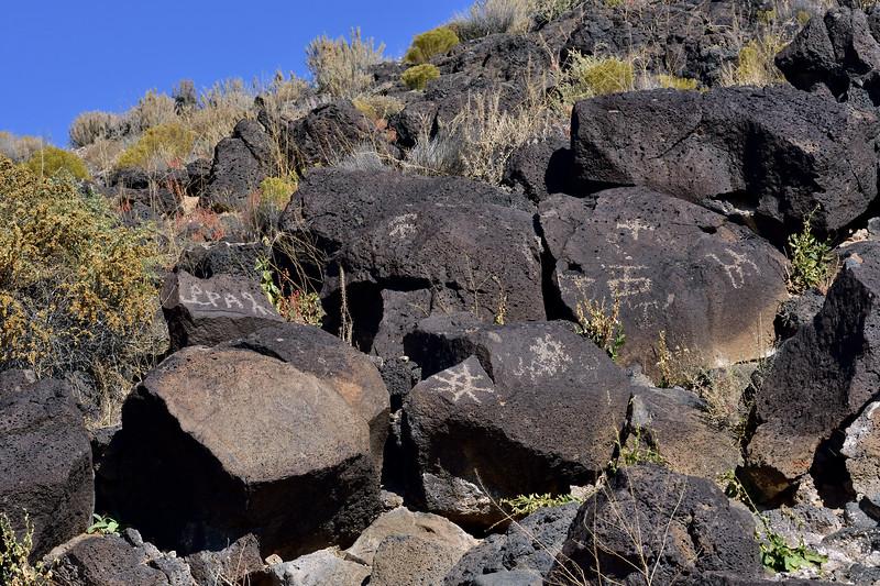 NM-PNM-PMT2019.11.12#1731.2. Piedras Marcadas Trail, Petroglyph Nat.Mon., New Mexico.