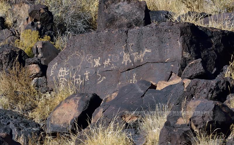NM-PNM-RT 2019.11.12#2161.2. Petroglyphs. Rinconada Canyon Trail, Petroglyph Nat. Mon., New Mexico.