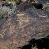 NM-PNM-PMT2019.11.12#2945.2. Piedras Marcadas Trail, Petroglyph Nat.Mon., New Mexico.