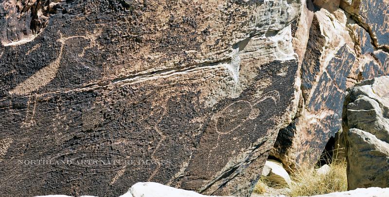 AZ-PFNP2017.10.11#1065-Petroglyphs. Near Puerco Pueblo. Petrified Forest Nat. Park Arizona.