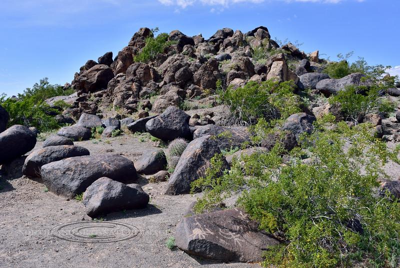AZ-PRPS-Petroglyphs 2019.3.6#393. Painted Rock Petroglyph Site Arizona.