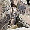 AZ-PFNP2017.10.11#1069-Petroglyphs. Near Puerco pueblo. Petrified Forest Nat. Park Arizona.