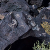 NM-PNM-PMT2019.11.12#1849.2. Piedras Marcadas Trail, Petroglyph Nat.Mon., New Mexico.