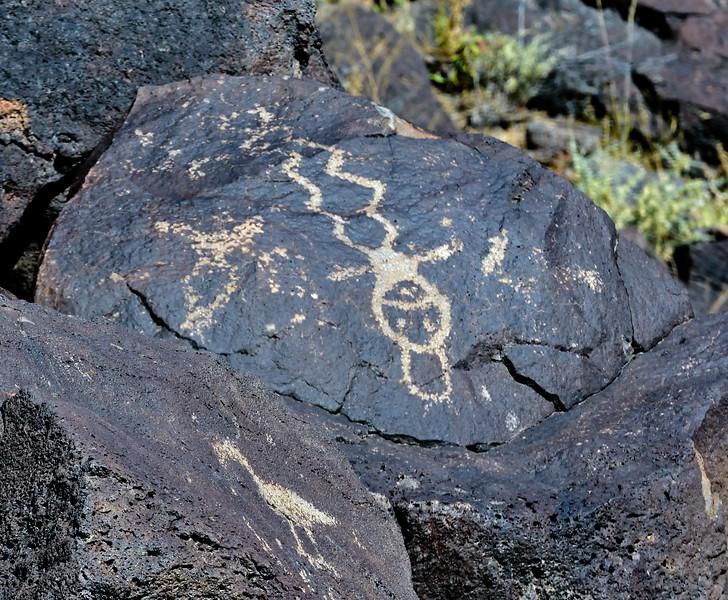NM-PNM-PMT2019.11.12#1836.2. Piedras Marcadas Trail, Petroglyph Nat.Mon., New Mexico.