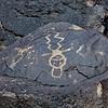 NM-PNM-PMT2019.11.12#1825.2. Piedras Marcadas Trail, Petroglyph Nat.Mon., New Mexico.