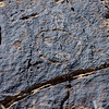AZ-PFNP2017.10.11#1076-Petroglyphs. Near Puerco Pueblo. Petrified Forest Nat. Park Arizona.