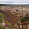 CO-MVNP2017.10.9-Fire Temple&House, #2.673. Fewkes Canyon. Mesa Verde Nat. Park Colorado.