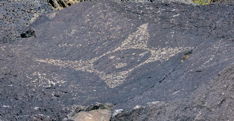 NM-PNM-PMT2019.11.12#1678.2. Piedras Marcadas Trail, Petroglyph Nat.Mon., New Mexico.