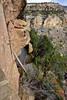 CO-MVNP2017.10.9- Cliff Dwelling, Balcony House1. Mesa Verde Nat. Park, Colorado. #540.