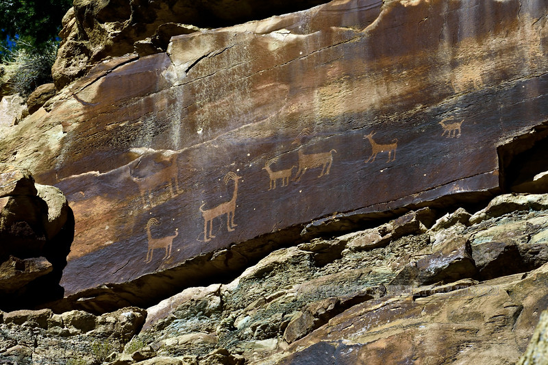 UT-NMC2017.10.7am11.35#319- Petroglyphs. Nine Mile Canyon Utah.