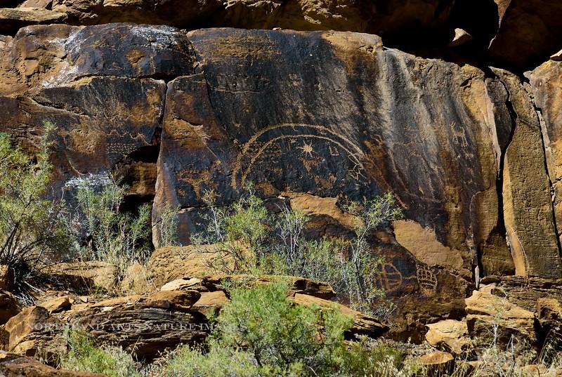 UT-NMC2017.10.7pm1.43#407- Petroglyphs. Nine Mile Canyon Utah.