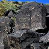 NM-PNM-PMT2019.11.12#1894.2. Piedras Marcadas Trail, Petroglyph Nat.Mon., New Mexico.