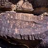 AZ-PFNP2017.10.11#963- Petroglyphs. Near Puerco Pueblo, Petrified Forest Nat. Park Arizona.