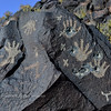 NM-PNM-PMT2019.11.12#2961.2. Piedras Marcadas Trail, Petroglyph Nat Mon., New Mexico.