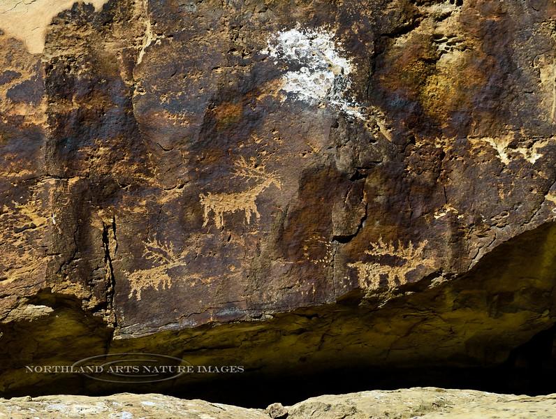 UT-NMC2017.10.7pm1.03#355- Petroglyphs. Nine Mile Canyon Utah.