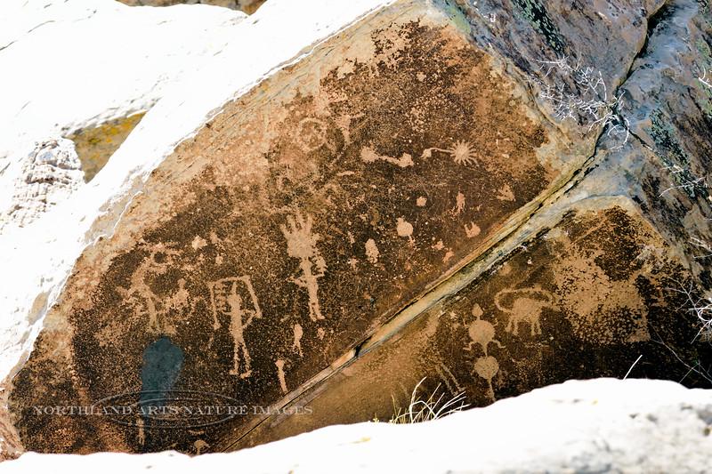 AZ-PFNP2017.10.11#1060-Petroglyphs. Near Puerco Pueblo. Petrified Forest Nat. Park Arizona.