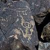NM-PNM-PMT2019.11.12#1899.2. Piedras Marcadas Trail, Petroglyph Nat.Mon., New Mexico.