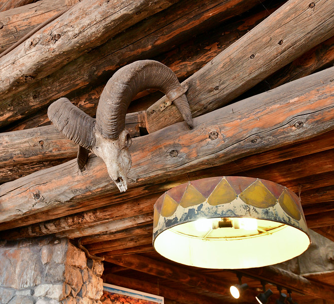 AZ-GCNP,WT2020.2.14#4321. A Desert bighorn ram above a light shade adapted from Zuni sand paintings in their Kiva's. Inside the Watchtower at Desert View, Grand Canyon Arizona.
