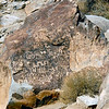 NV-GVC2007.2.26#0428- Petroglyphs. Grapevine Canyon Nevada.