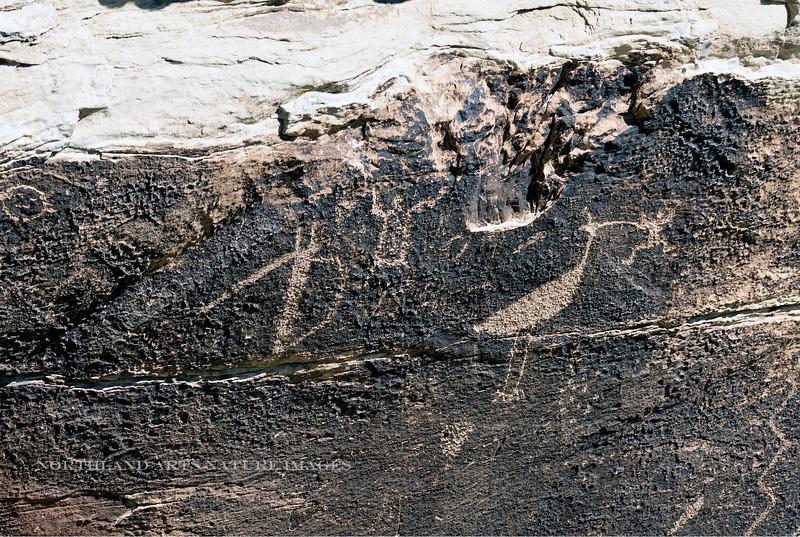 AZ-PFNP2017.10.11#1066.-Petroglyphs. Petrified Forest Nat. Park Arizona.