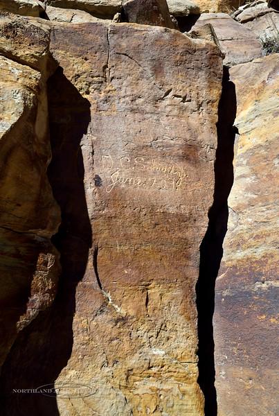 UT-NMC2017.10.7am11.55#409- Petroglyphs. Nine Mile Canyon Utah.