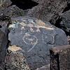 NM-PNM-PMT2019.11.12#1875.2. Piedras Marcadas Trail, Petroglyph Nat.Mon., New Mexico.