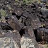 NM-PNM-PMT2019.11.12#2988.2. Piedras Marcadas Trail, Petroglyph Nat.Mon., New Mexico.
