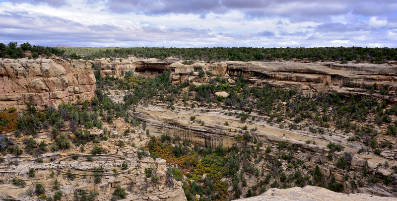 CO-MVNP2017.10.9- Cliff Palace #672. Mesa Verde Nat. Park Colorado.