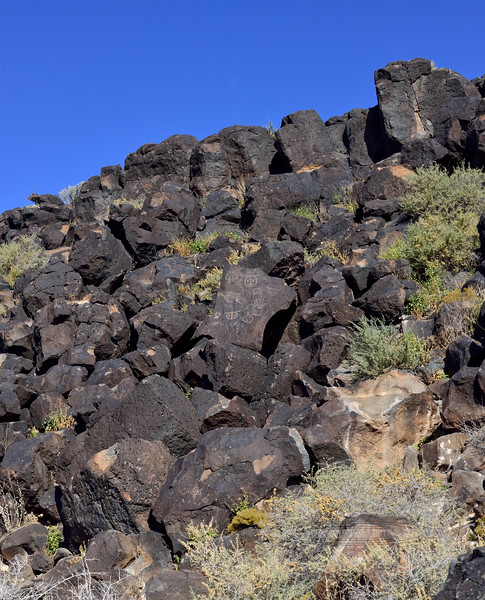 NM-PNM-PMT2019.11.12#2934.2. Piedras Marcadas Trail, Petroglyph Nat.Mon., New Mexico.