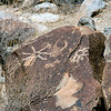 NV-GVC2007.2.26#0447- Petroglyphs. Grapevine Canyon  Nevada.