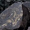 NM-PNM-PMT2019.11.12#1890.2. Piedras Marcadas Trail, Petroglyph Nat.Mon., New Mexico.