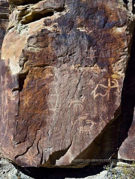 UT-NMC2017.10.7am11.56#411- Petroglyphs. Nine Mile Canyon Utah.