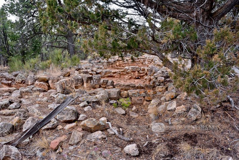 AZ-GCNP-Tusayan ruins 2017.11.29#251. Living & storage rooms. Grand Canyon Nat. Park, Arizona. Occupied 1185 A.D.