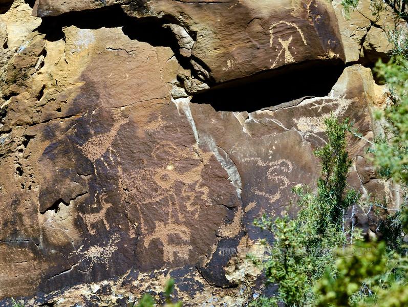 UT-NMC2017.10.7pm1.41#405- Petroglyphs. Nine Mile Canyon Utah.