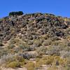 NM-PNM-PMT2019.11.12#2923.2. Piedras Marcadas Trail, Petroglyph Nat.Mon., New Mexico.