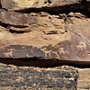 UT-NMC2017.10.7pm3.21#381- Petroglyphs. Nine Mile Canyon Utah.