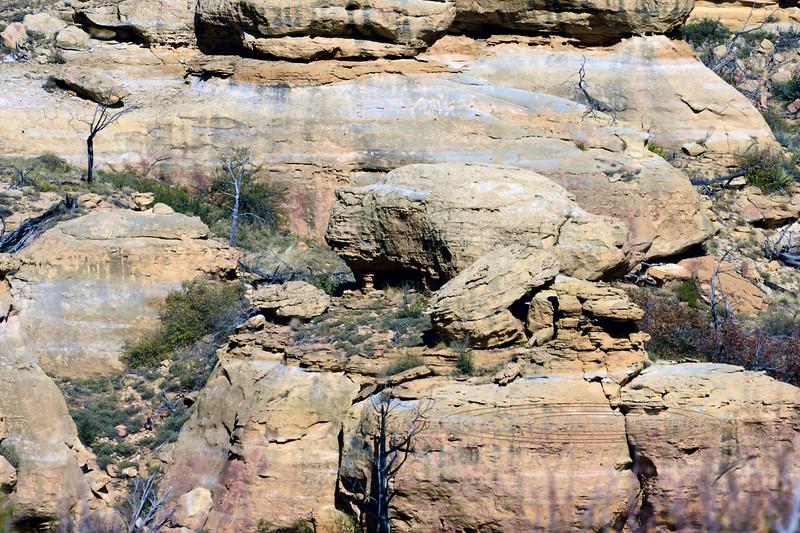 CO-MVNP2017.10.9-Weatherill Mesa#972. Mesa Verde nat. Park Colorado.