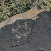 NM-PNM-PMT2019.11.12#1628.2. Piedras Marcadas Trail, Petroglyph Nat.Mon., New Mexico.