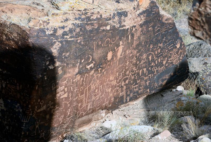 "AZ-PFNP2017.9.17#3860-The ""Newspaper Rock""Petroglyphs. Petrified Forest Nat. Park. Arizona. 1250 A.D. to late 1300's."
