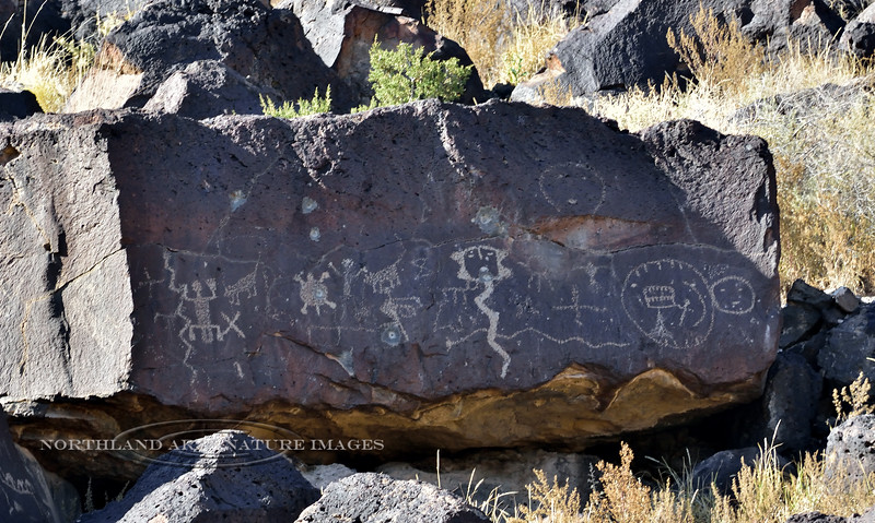 NM-PNM-RT 2019.11.12#2153.2. Petroglyphs, Rinconada Canyon Trail, Petroglyph Nat.Mon., New Mexico.