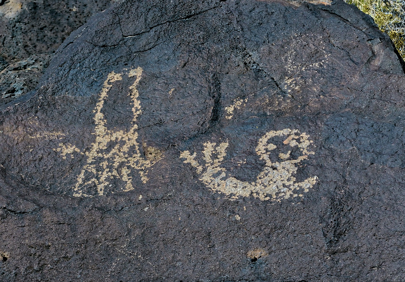 NM-PNM-PMT2019.11.12#1858.2. Piedras Marcadas Trail, Petroglyph Nat.Mon., New Mexico.