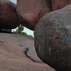 Elephant Rock #3