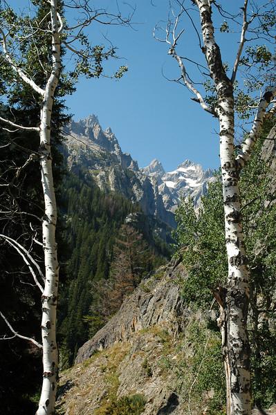 Grand Teton NP, Wyoming