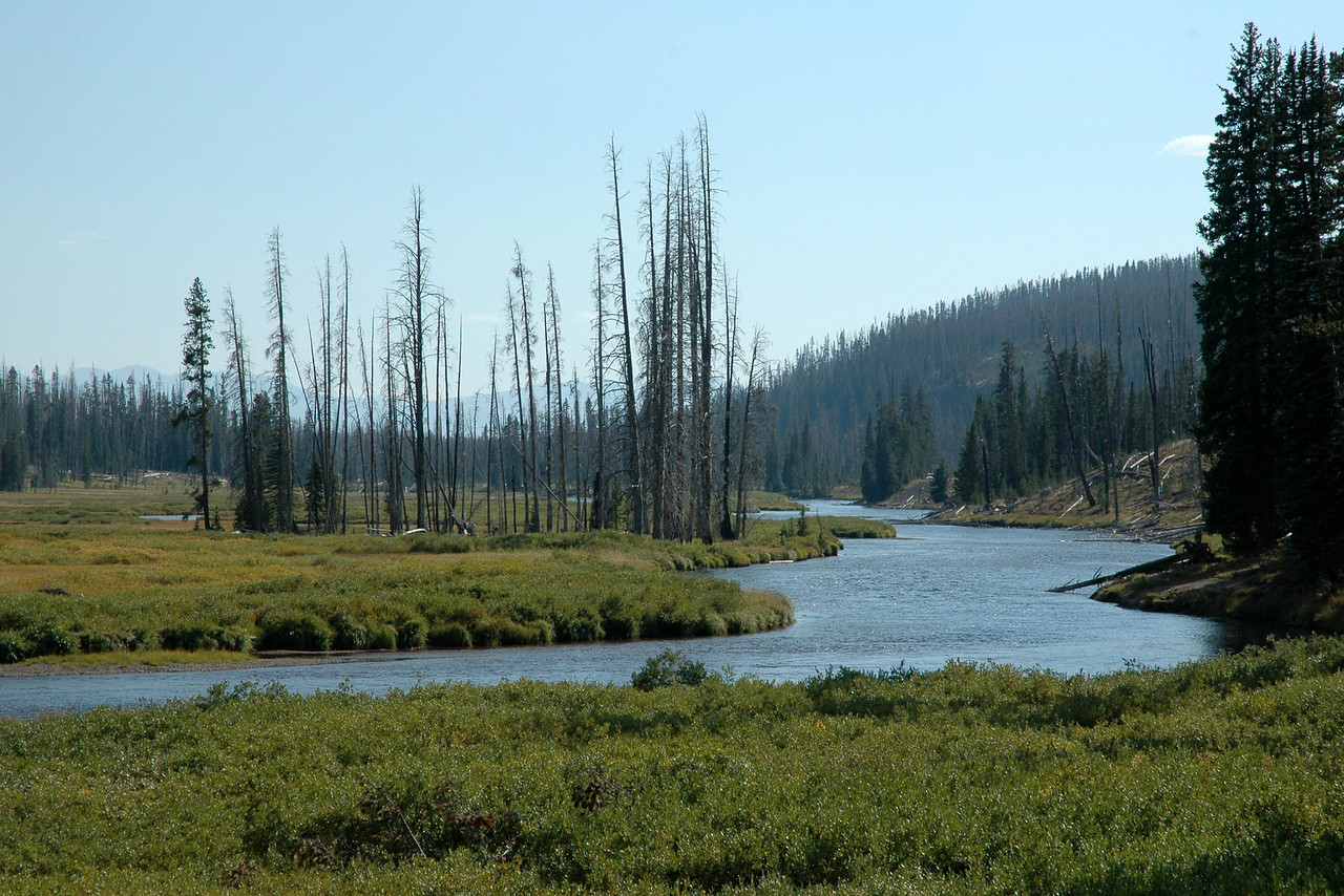 Lewis River, Yellowstone NP