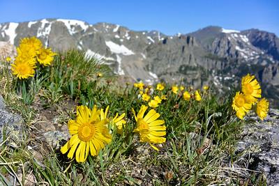 Rocky Mountain NP 2014