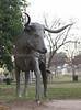 RoundRock-Texas-7146