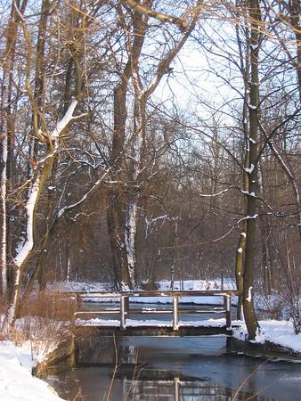 Running Loop - Winter